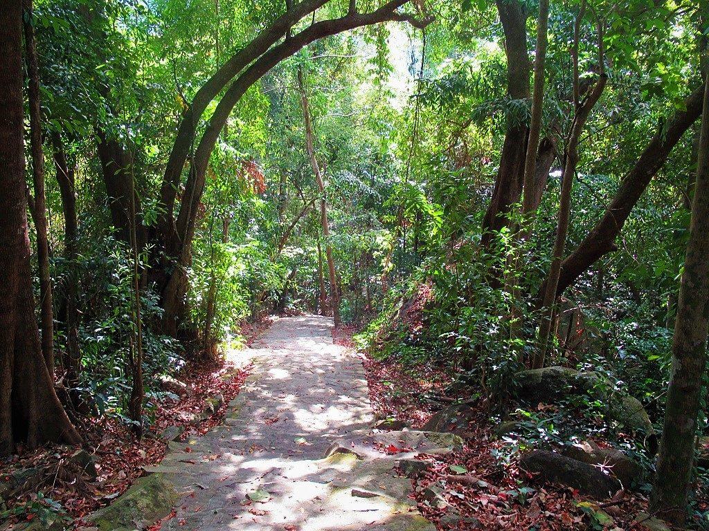 Hiking trail, Con Son Island, Con Dao, Vietnam