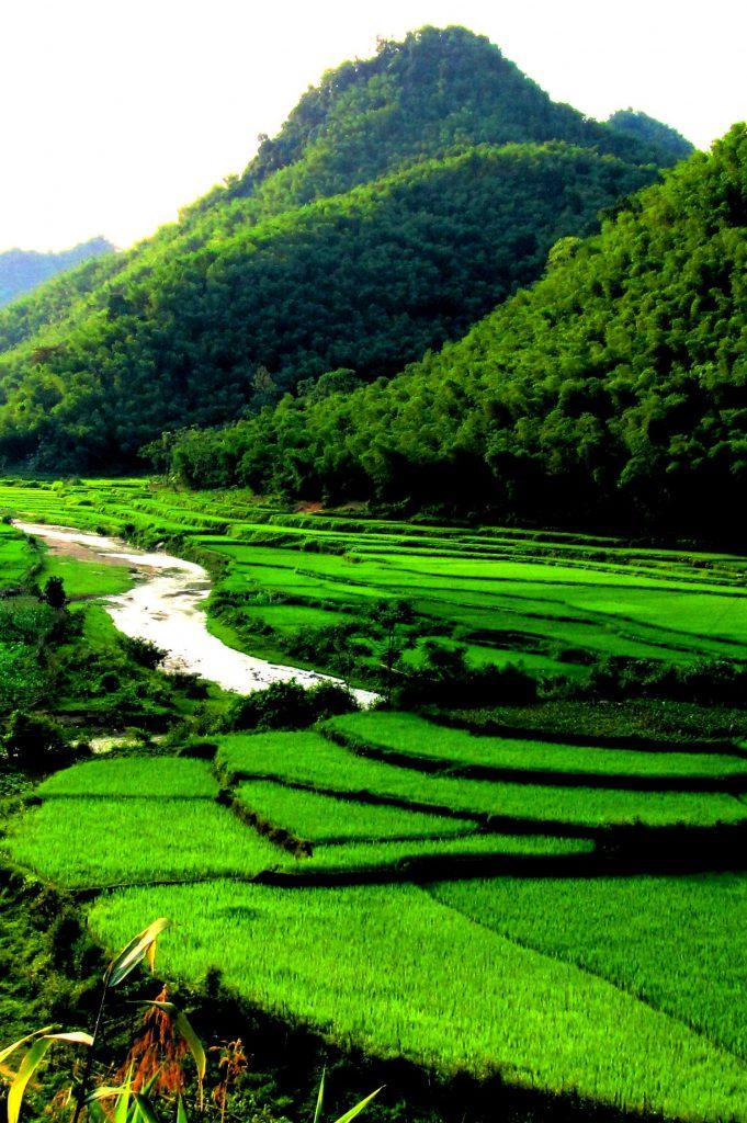 Pù Luông Nature Reserve