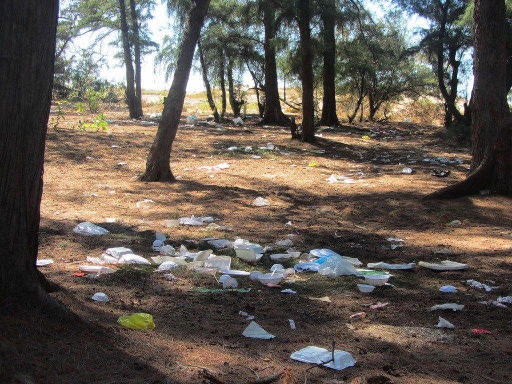 Trash on Lien Huong Beach, Vietnam