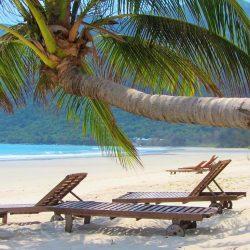 23 of the Best Beaches in Vietnam