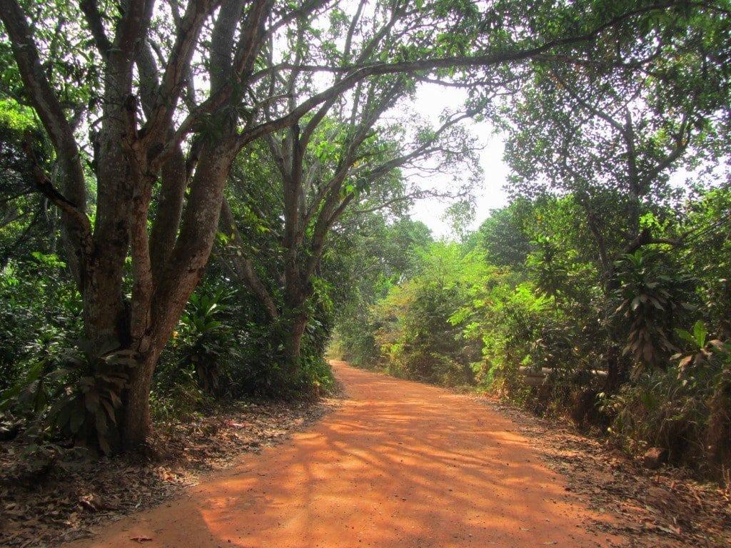 Dirt lane to Sao Beach, Phu Quoc Island, Vietnam
