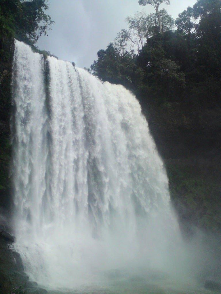 Towering & majestic, Dambri waterfall
