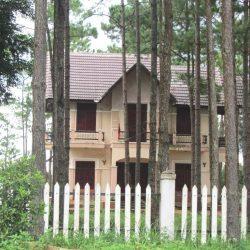 Guest houses: nhà nghỉ
