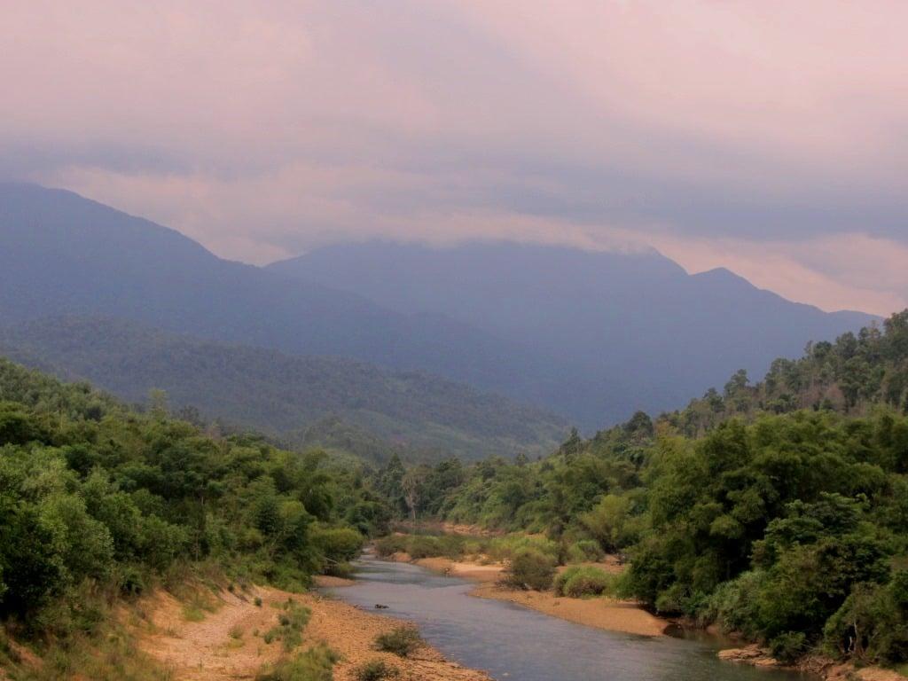 Cinnamon river banks