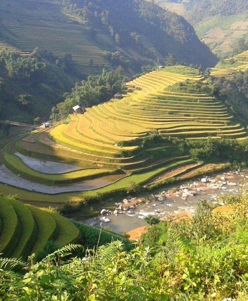 Colour & pattern, Mu Cang Chai rice terraces