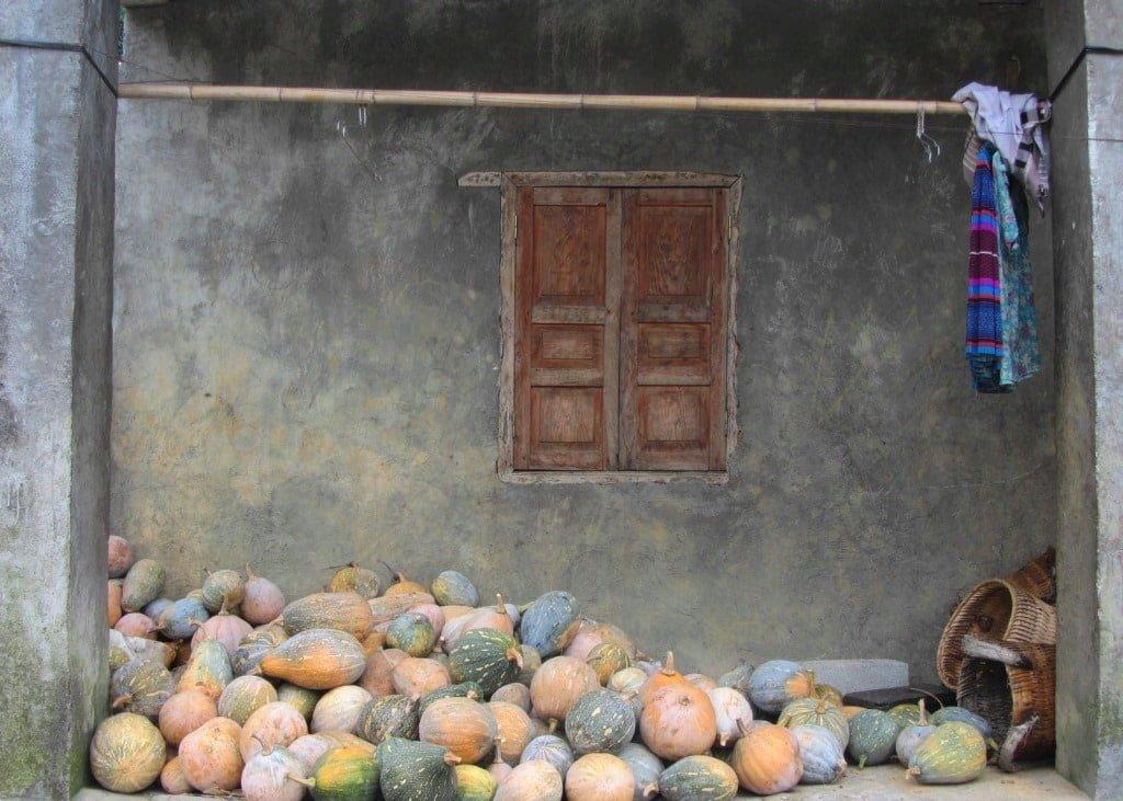 Minority village home, Dong Van, Meo Vac, Ha Giang, Vietnam