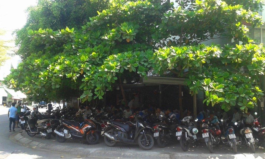 Ghe Dau Cafe, Saigon