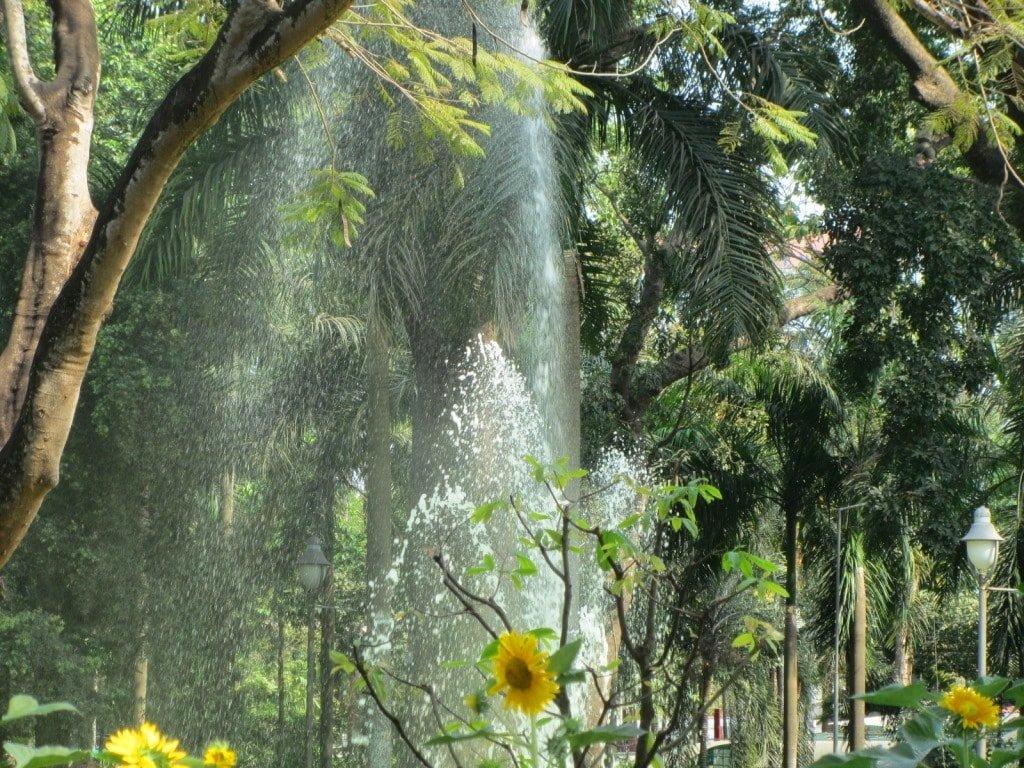 Botanical Gardens & Zoo, Saigon