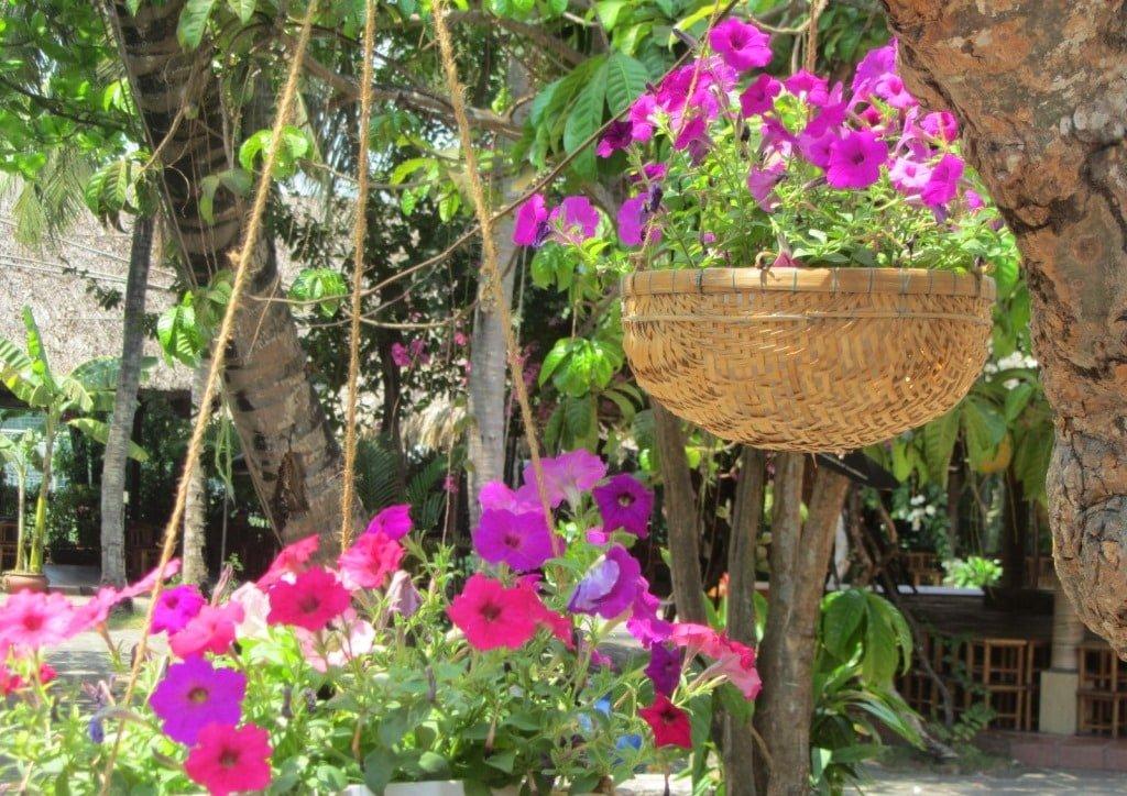 Binh Quoi Parks, Saigon