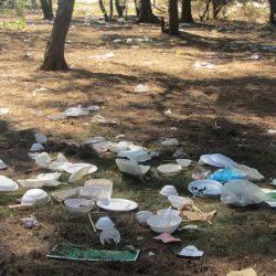 Trash Talk: Litter in Vietnam's Beauty Spots