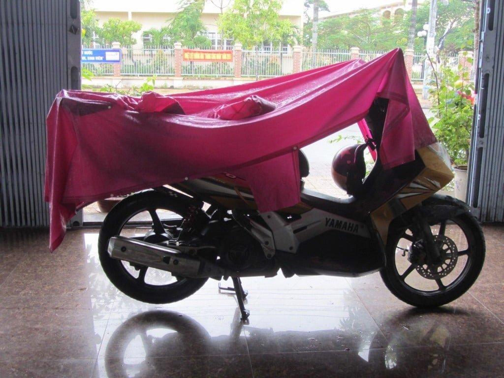 After the rain, Mekong Delta