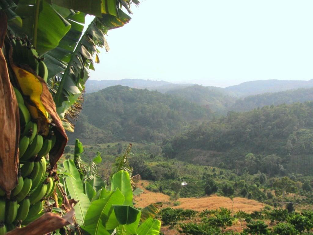 Central Highlands landscape near Di Linh, Vietnam