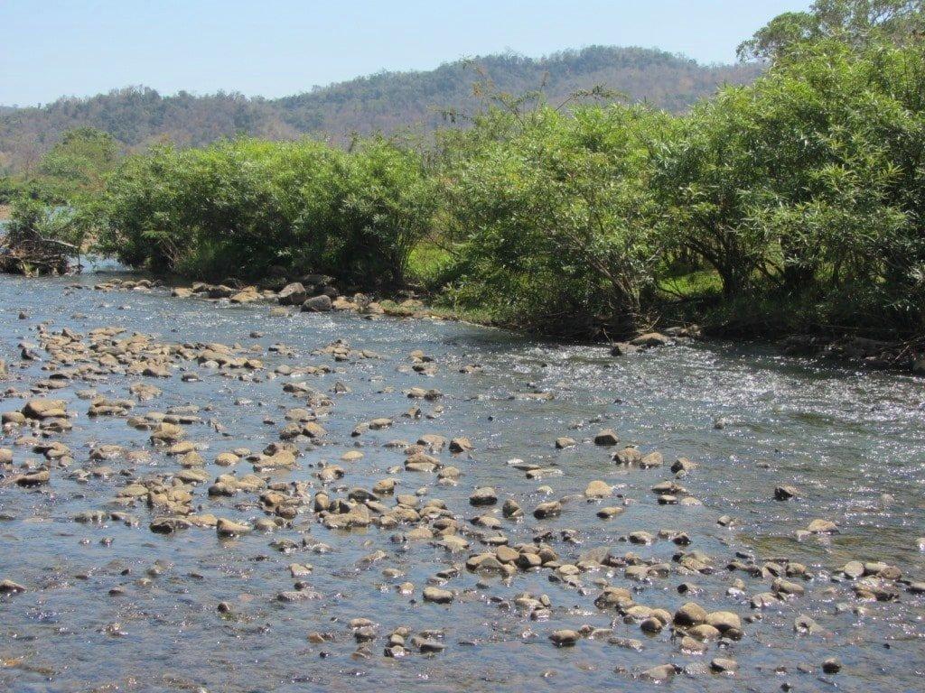 The river where I met Ms Ca, Vietnam