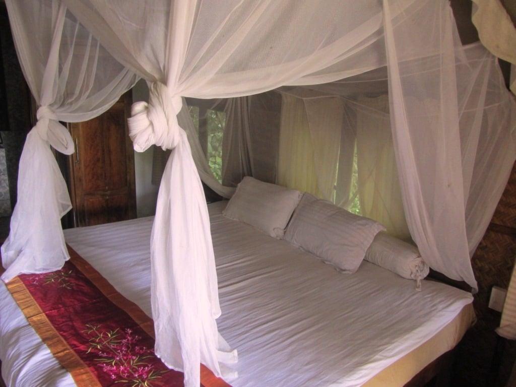 Forest Floor Lodge, Cat Tien National Park, Vietnam