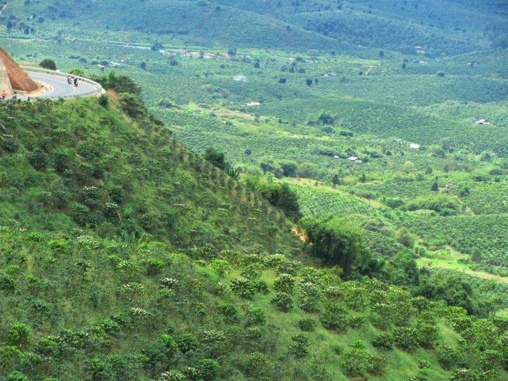 New roads to Dalat & coffee plantations, Vietnam