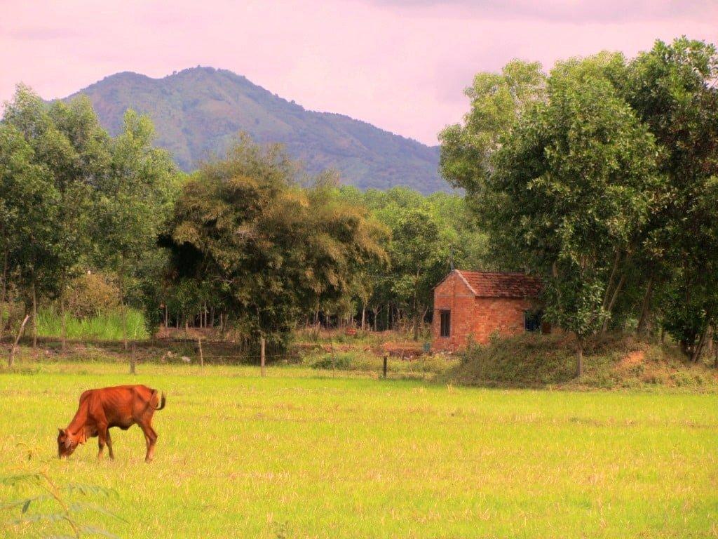 Ma Da Gui, Centrals Highlands, Vietnam