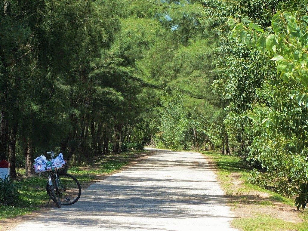 Road near Vinh Moc Tunnels, Quang Tri, Vietnam