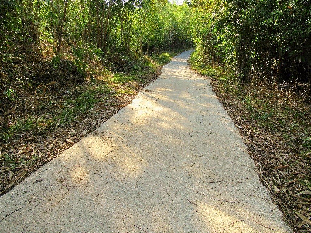 The road to Núi Dinh Mountain, Ba Ria, Vietnam