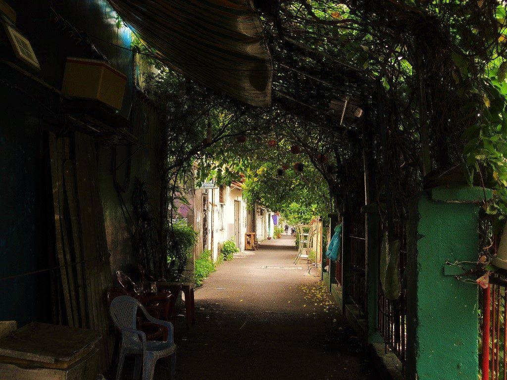 Lanes along the Saigon railway line, Ho Chi Minh City