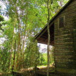 Phương Bối Hill: The Buddhist Monk Thích Nhất Hạnh's Retreat