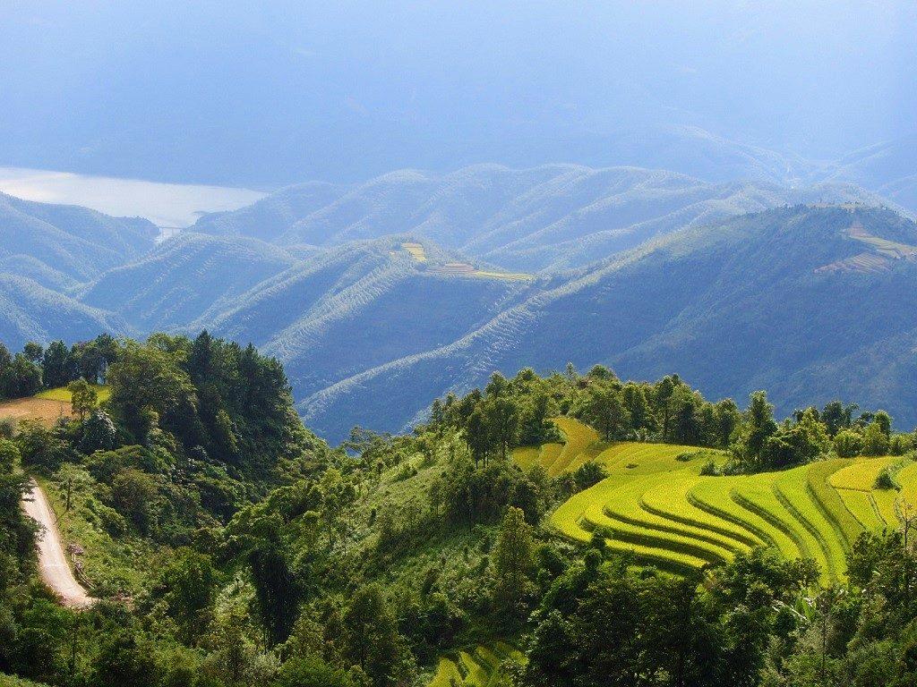 Rice terraces, Lai Chau Province, northwest Vietnam