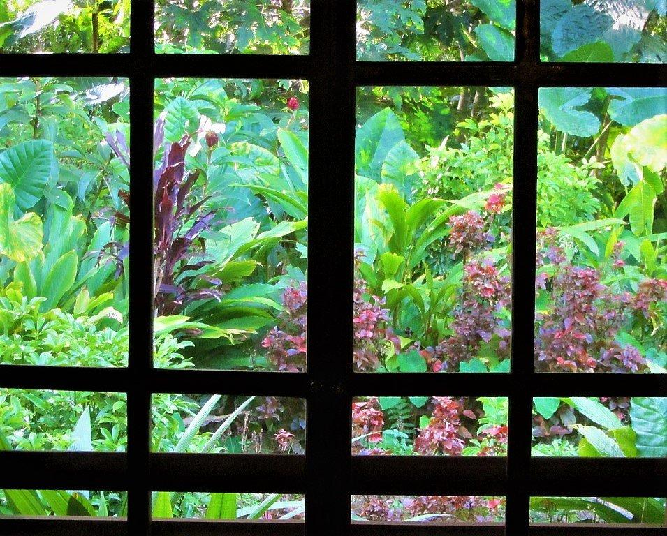 Garden at Pan Hou Village Ecolodge, Ha Giang, Vietnam