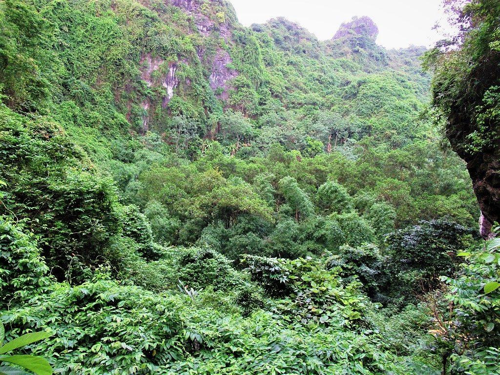 Hidden Valley, Cat Ba Island, Vietnam