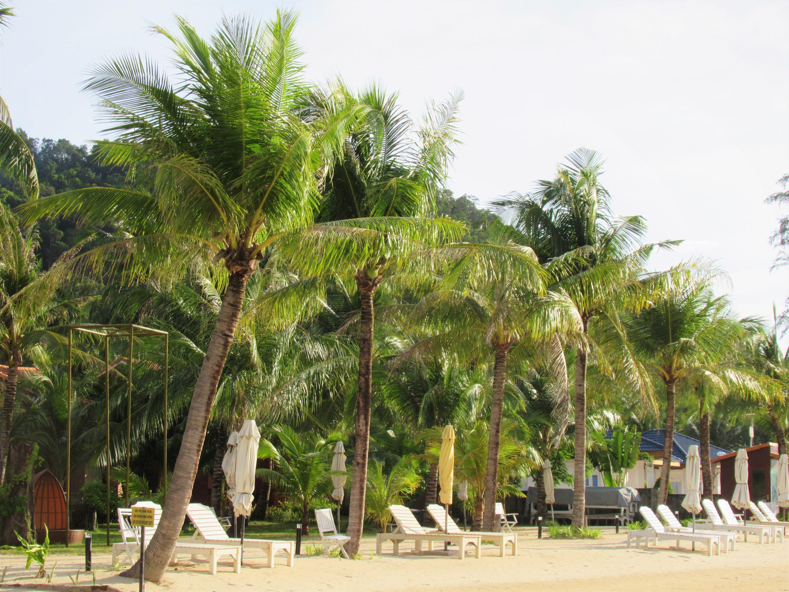 Beach at Gold Coast Resort, Phu Quoc Island, Vietnam
